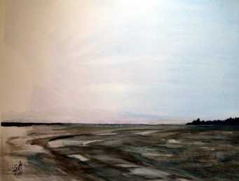 Le bassin d'Arcachon à marée basse